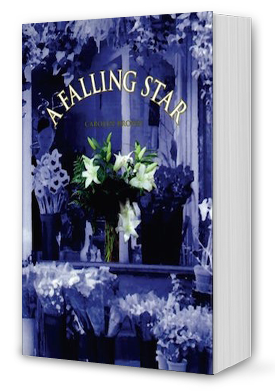 A Falling Star Book Cover