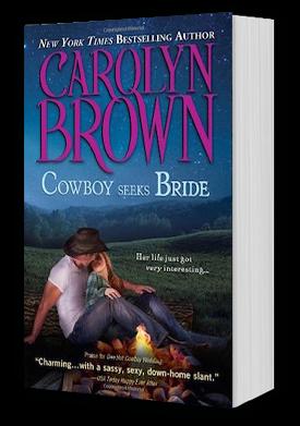 Cowboy Seeks Bride Book Cover