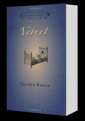 Velvet Book Cover